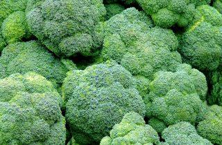 natuurlijk behandelen van peesplaatontsteking broccoli